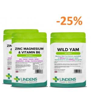 2x 90 tablet Lindens Cink, Magnezij in Vitamin B6 + 1x 100 tablet Lindens Divji Jam 500 mg