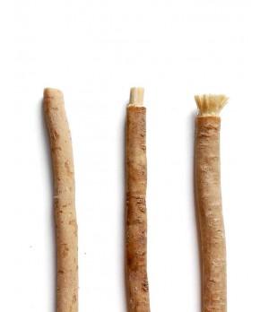 Yoni Natural toothbrush Miswak - naravna zobna ščetka