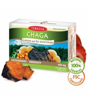 Terezia medicinski gobi Chaga (Čaga) + Reishi (Reiši) ter Rakitovcec, 60 kapsul
