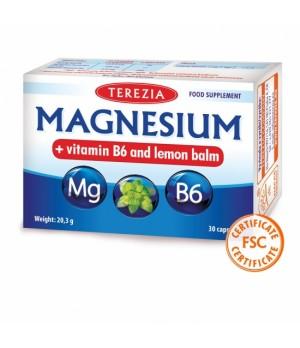 Terezia Magnezij + vitamin B6 in melisa, 30 kapsul